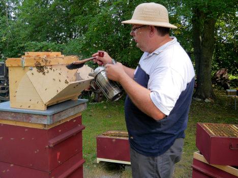 Muhu mesinik Aimar Lauge ja mustmiljon mesilast. Foto: erakogu