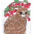 Ornitoloogidest, disaineritest ja kunstnikest žürii kulutas aasta linnu – viu – teemalise särgikavandite konkursi parimateks autoriteks ka Aste põhikooli õpilased. Kuni 12-aastaste grupis kuulus kolme parema kavandi hulka 4. klassi […]