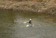 KUULUS SUPLUS: Tänaku - Mõlderi põgenemine uppuvalt autolt on kindlasti kirjutatud ralli ajalukku. Foto: wrc.com