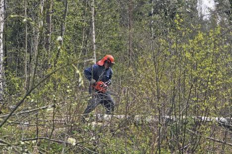 TALGUD: Paar aastat tagasi tegi Kärla kandis talgutööd ka koolipapa Jaan Lember. Foto: Tõnu Veldre