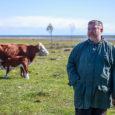 """Laidevahe looduskaitsealal kümmekond aastat maahooldusega tegelenud Kalev Au on murelik, sest riigipoolne toetus maahooldajatele on vähenenud. """"Võeti vähemaks, täiega,"""" muretseb pärandmaastike taaselustamisele pühendunud Siiksaare küla mees Kalev Au vähenenud riigipoolset […]"""