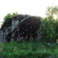 Keskkonnaamet korrastab sel aastal Saare maakonnas kokku kuus kaitsealust puud ja kivi. Keskkonnaameti maahoolduse spetsialist Piret Sepp ütles, et sel aastal korrastatakse Saare maakonnas järgmised kaitsealused üksikobjektid: Kõrkvere hiidrahn Pöide […]