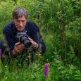 Sel aastal kolmes osas toimuv Saaremaa orhideefestival sai eile keskpäeval järje, kui huvilised asusid giid Andrus Aumehe juhtimisel paadiga teele Vilsandi saarele, et tutvuda sealsete orhideedega. Kuna kohtade arv paadis […]