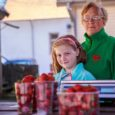 Kui tavaliselt on maasikamüük Kuressaare turul juuli alguses juba täies hoos olnud, siis sellel aastal lükkas külm kevad hooaja paar nädalat edasi. Kuressaare turu kauaaegne müüja Helve Turja noppis eelmisel […]