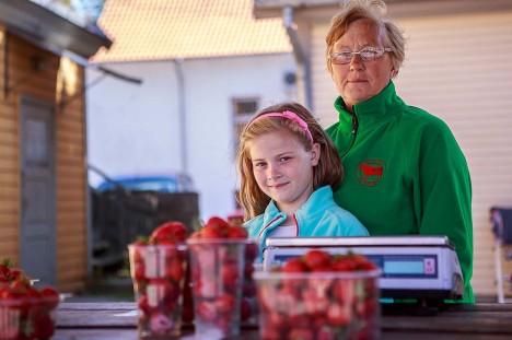 MAASIKAMÜÜJAD: Helve Turja lapselaps Laura käib vanaema aitamas. Foto: Tambet Allik
