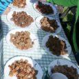 Laupäeva õhtul sai Laadla seltsimaja õuel teoks järjekordne leivapäev. Nagu igal aastal, jagus tänavugi rohkesti heategevuslikke müügilette, kust sai osta saiakesi ja kooke, koduleiba ja mett, karaskit, suitsukala ning värsket […]