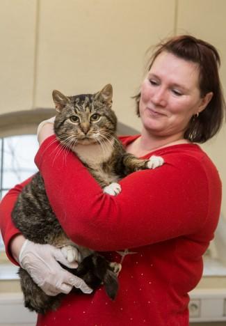 SÕBRALIKULT KOOS: Salmelt lemmikloomade turvakodusse toodud Jõmm on Marge Kaju sõnul igati sõbralik kass. RAUL VINNI
