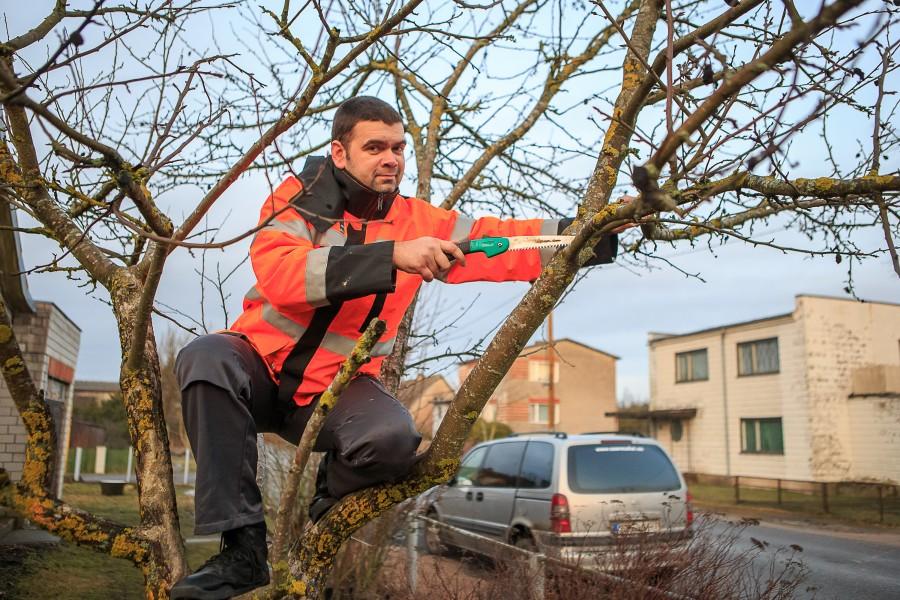 """Maastikuehituse ja -hoolduse teenust pakkuv ettevõte OÜ Kena Aed otsib kohusetundlikku töötajat, kes ei pelga vajadusel ka puu otsa ronida. Aga mitte ainult.  """"Vajan ametisse hakkajat inimest, kes oskab […]"""