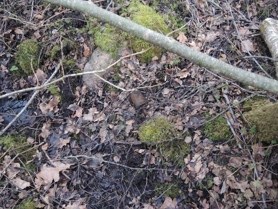 """19. veebruaril said Lääne-Eesti pommigrupi demineerijad väljakutse Saaremaale Salme valda Kaimri külla, kus oli metsatööde käigus leitud sütikuga käsigranaat RG-42. """"Leiu halva seisundi tõttu otsustati see hävitada leiukohas,"""" Lääne päästekeskuse […]"""