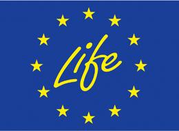 Väikese väina tammiavade ehitust käsitleva töörühma üleeilsel nõupidamisel kaaluti võimalust taotleda Väikese väina tammiavade ehitamiseks raha rahvusvahelistest fondidest, näiteks Läänemere piirkonna arendamiseks mõeldud toetusskeemidest või Euroopa Liidu LIFE-programmist, vahendas keskkonnaministeeriumi […]
