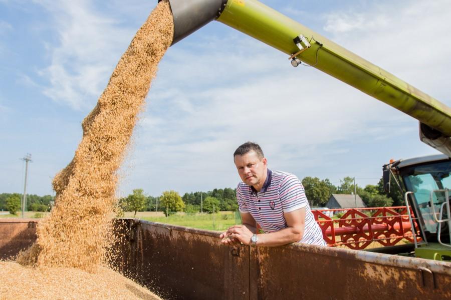 """Kärla PÜ plaanib rajada ajast ja arust Eikla farmihoonete asemele 765-kohalise noorkarja laudakompleksi, mis tõestab, et poolteist aastat väldanud piimanduskriis ei välista usku paremasse tulevikku. """"Põhimõtteliselt tahame farmi ringi ehitada […]"""