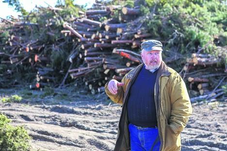 HALB ÜLLATUS: Üllal eesmärgil raiutud puit takistab Kalev Aul täita loopealsete hooldamise kohustust. MAANUS MASING