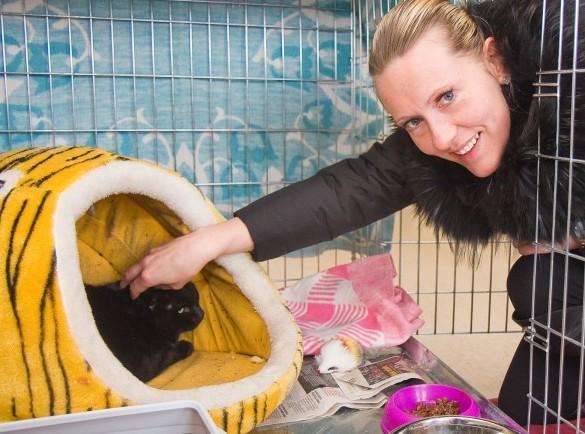 """MTÜ Saaremaa Lemmikloomade Turvakodu pöördus Kuressaare linnavalitsuse poole sooviga leida turvakodule uus maja.  MTÜ juhatuse liige Edit Annusver ütles, et praegustes üüriruumides on kohti ainult kasside jaoks. """"Koeri sinna […]"""