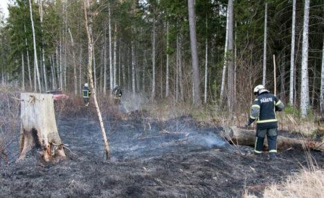 MAASTIK PÕLEB: viimati toimusid maastikupõlengud eelmisel kolmapäeval Leisi vallas Murika külas ja Muhus Igakülas.  IRINA MÄGI