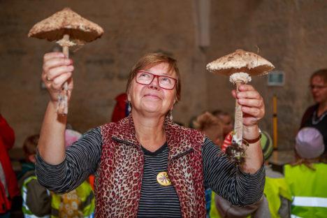 Keskkonnakäpa auhinnale kandideeriv Sirje Azarov on tuntud populaarsete seenenäituste korraldajana. Autor: Tambet Allik