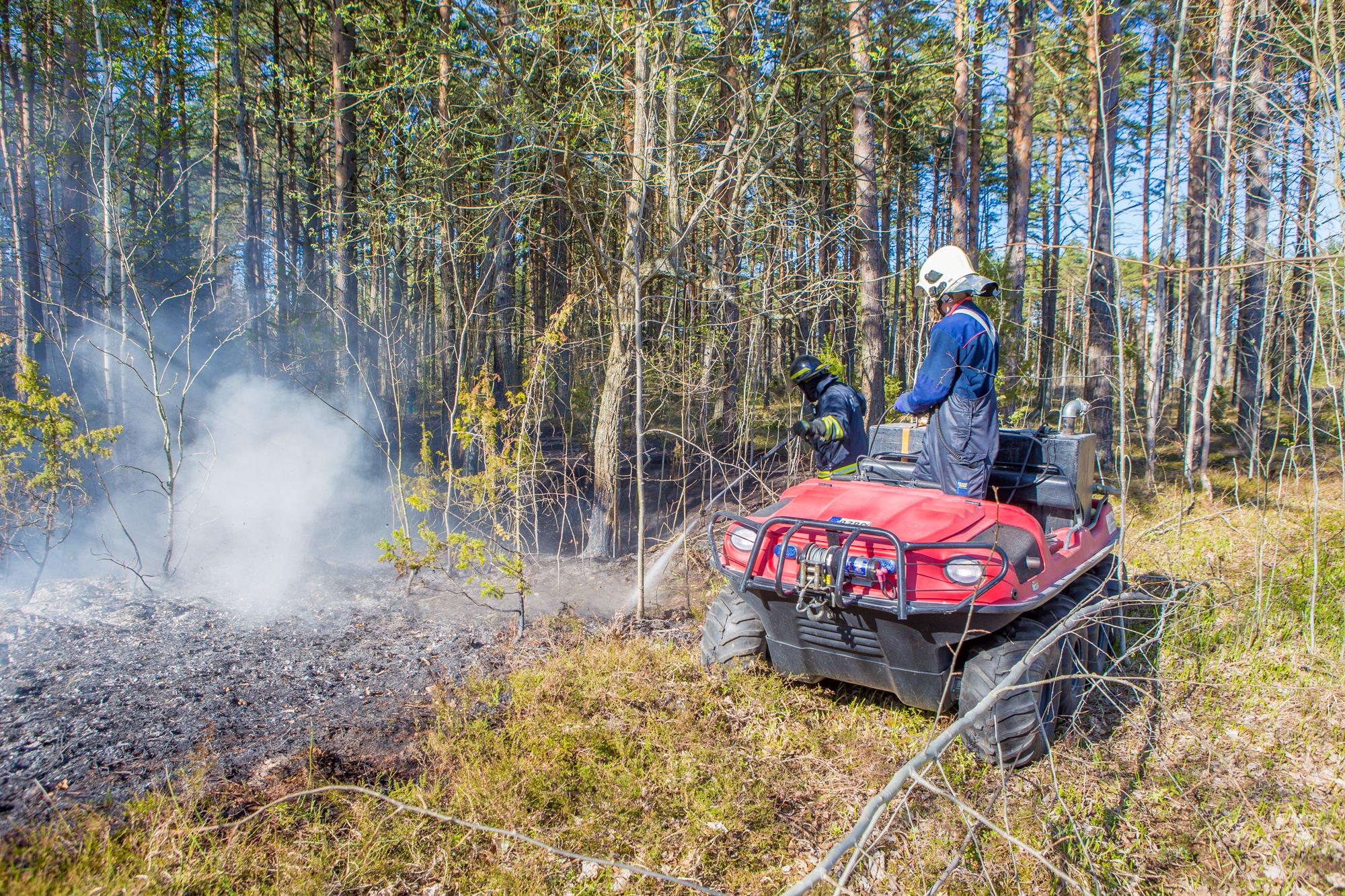 Laupäeval kell 16:45 teatati maastikupõlengust Lääne-Saare vallas, Mätasselja külas. Kokku põles männimetsa alune 50×50 meetri ulatuses. Päästjad kustutasid tulekahju.Põlengu tekkepõhjuse selgitab välja uurimine. Fotod: Maanus Masing