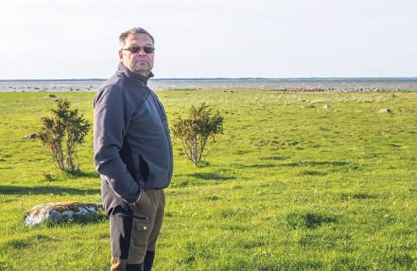 PÄRANDMAASTIK: Kalvar Ige on Kõkvere kinnikasvanud rannikul taastanud sajanditaguse hiilguse.  Foto: MAANUS MASING