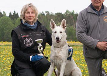 Möödunud nädalavahetusel toimus Harjumaal Eesti saksa lambakoerte ühingu korraldatud põllujäljekatse võistlus, kus oli kolme võistlejaga esindatud ka Saaremaa koerteklubi Aktiiv. Põllujäljekatse (PJK) on Aktiivi kinnitusel eelkõige teenistuskoertele mõeldud dressuuriala, mis […]