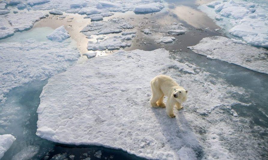 Juba sel või järgmisel suvel võib Arktika jääkattest täielikult vabaneda. Kui nii juhtub, oleks see esimest korda 100000 aasta jooksul. Sellise prognoosi käis välja Cambridge'i ülikooli professor Peter Wadhams, kirjutab […]