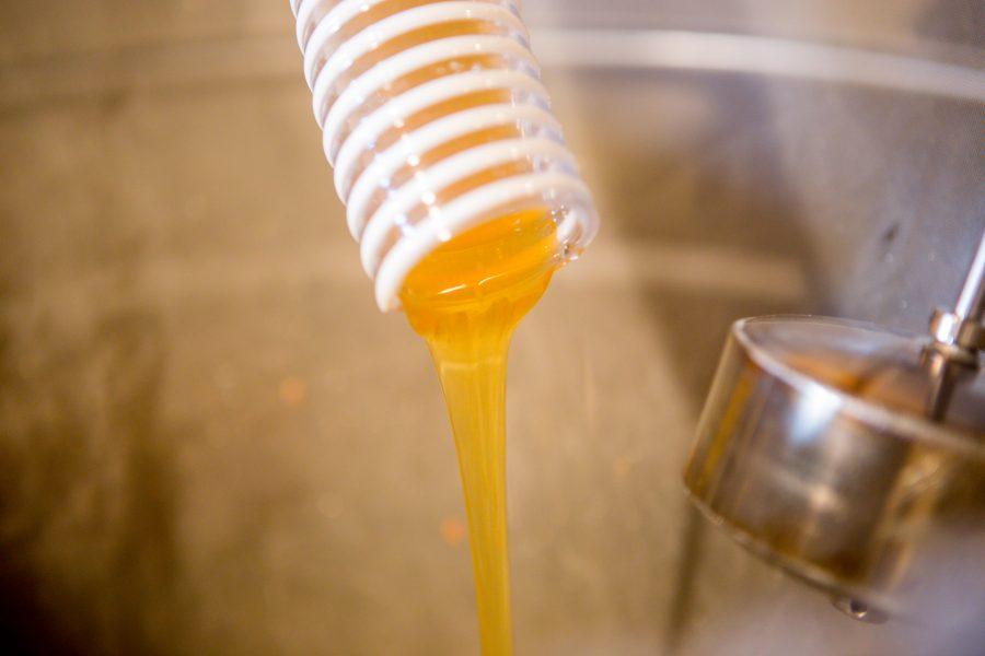 Hellamaal tegutsev Muhu mesinik Aimar Lauge soetas toetuse abiga uue meekäitlusliini, mis muudab kärgede kaanetamise ja mee vurritamise senisest hulga lihtsamaks ja kiiremaks.  Kolmapäeval oli Muhu mesinduses tähtis päev, […]