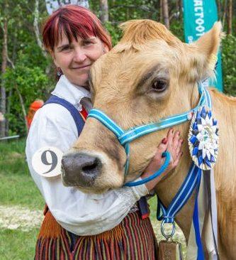 """Saarte vissivõistlusel kuu aega tagasi Eesti tõugu veiste arvestuses viienda võidu saavutanud Anne Kiider produktiivsel holsteini tõul oma karjas kohta ei näe.  """"Kadakate vahele selline ülearetatud loom ei sobi,"""" […]"""