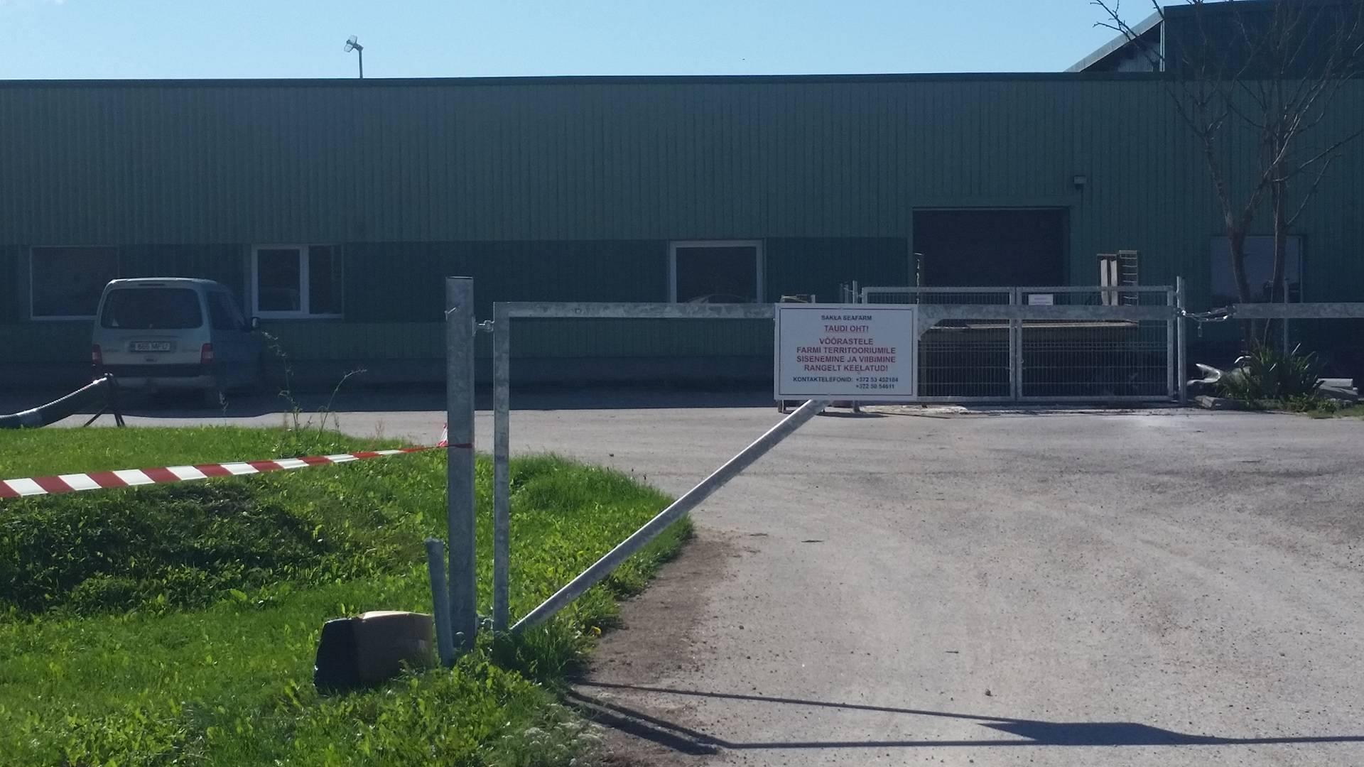 Veterinaar- ja toiduamet (VTA) rahuldas Saaremaal seakatkuga nakatunud farmi omaniku esitatud taotluse sigade Aafrika katku tõttu tekkinud kahjude hüvitamiseks summas 226167 eurot. Hüvitamise otsusel võeti aluseks VTA ametnike kontrollide käigus […]