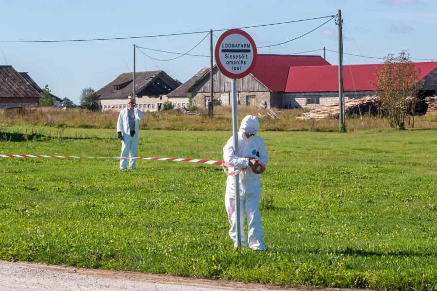 """Seakatku Sakla sigalasse jõudmise põhjuseid välja selgitama tulnud Eesti maaülikooli teadlased lõpetasid oma töö ja edastasid tulemused eile õhtul veterinaar- ja toiduametile. """"Praegu töötame esialgse hinnangu kallal ja tänase päeva […]"""