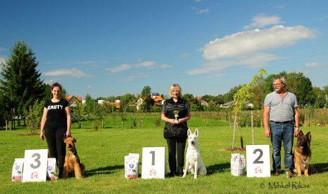 VÕIDUKAD: Kersti Pink ja Born To Win White Target (keskel), paremal Ahto Luidalepp ja Heleros Viola ning vasakul Inger Kuus ja Katherinas Land Some Marathon. MIHKEL RIKAS