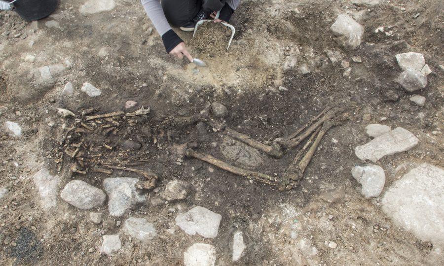 Tõllustest, talunike Jaan ja Anne Kiideri lihaveiste lauda tagant, leiti kahe inimese säilmed, mis võivad pärineda kivi- või pronksiajast. Olenemata säilmete lõplikust dateeringust, on need Eesti kontekstis unikaalsed ja suure […]