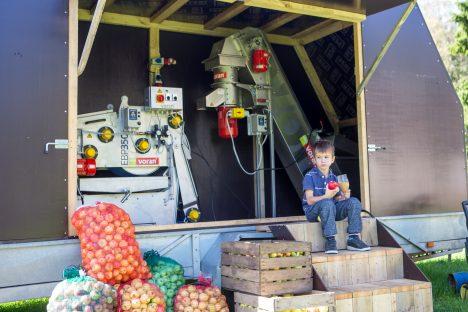 MOBIILNE TOOTMINE: Leisis peagi startiv õunamahla tootmine on ehitatud auto treilerile, et mahla pressida seal, kus parasjagu vaja. Pildil proovib oma tarbeks pressitud mahla perepoeg Risto Nurk. Foto: MAANUS MASING