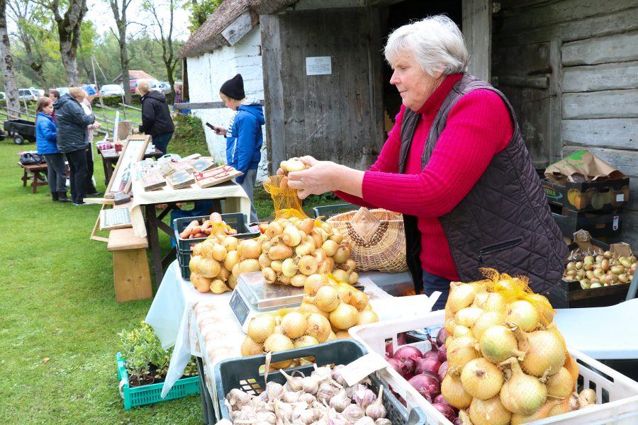 """24. septembril oli Mihkli talumuuseumi õu Vikil siginat-saginat täis, sest toimus iga-aastane mihklilaat. Juba viiendat aastat sai koostöös keskkonnaametiga teoks ka väliseminar, mille teema oli seekord """"Oma ürgne ja ehe"""". […]"""
