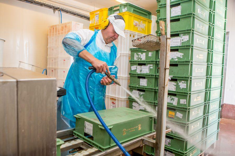 Ehkki Saaremaa lihatööstuse erinevaid tööpakkumisi vilksab tööpakkumiste seast aeg-ajalt ikka läbi, on nüüd, peagi algava sügise hakul tööd pakkuda nii puhastusteenindajatele kui ka laohoidjale. Lihatööstusest on saanud üks Saare maakonna […]