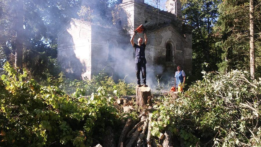 Tiirimetsa kiriku paljastamine põlispuudest Foto: ANU KASK