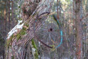Ehteis puu