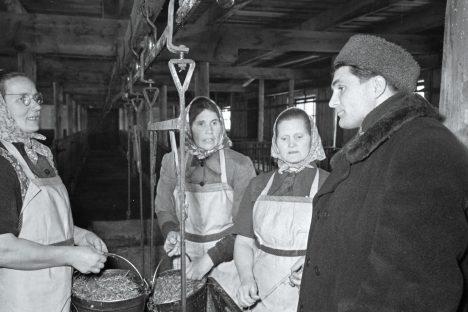 MÄRTS 1957: E. Normani fotol on Orissaare rajooni Ühismaa kolhoosi esimees Eugenius Kokk (paremal) vestlemas seatalitajate I. Vahteri, J. Vahteri ja A. Kipperiga. EFA