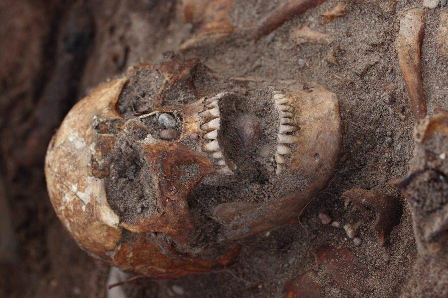 """Arheoloog Jüri Peets avaldas Delfi saates """"Sensor"""" Salme laevmatuste kohta uue hüpoteesi, mille kohaselt on laevas viimse puhkepaiga leidnud muistne viikingikuningas. Aastail 2008 ja 2009 Salmel avastatud sõdalaste säilmetega muinaslaevade […]"""