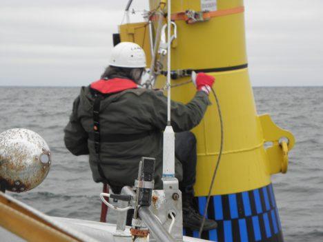 HARULDANE UURING: Detektori paigaldamine kaugele avamerele oli peamine osa Eestimaa Looduse Fondi (ELF) teaduri Lauri Lutsari sellesügisesest nahkhiirte rändeuuringust merel. Seni pole meil merel sellist automaatset seadet kasutatud.  HILLAR LIPP