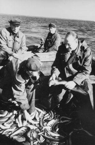 SAARLASED PÜÜGIL: Sõrve Kaluri kalurid angerjapüügilt tagasi pöördumas. Paremal kolhoosi esimees B. Tamm. V. GORBUNOV / EESTI FILMIARHIIV