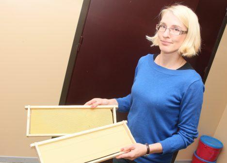 KÄRJETÄIS PABERITÖÖD: Mitmeid projekte vedanud mesinik ja puuviljakasvataja Tiina Kiiker on seekord bürkraatia ees alla andunud. IRINA MÄGI